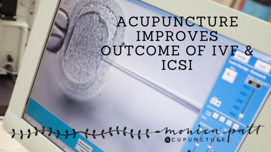 Acupuncture IVF ICSI
